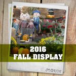 2016 Fall Display