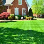 New-Home Landscaping