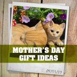 Album: Mother's Day Gift Ideas – 05/11/17
