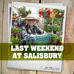 Weekend at Salisbury May 31