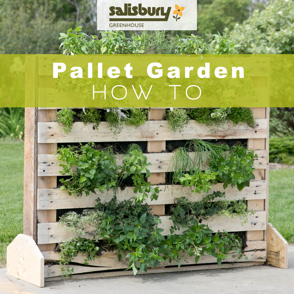 Pallet garden how to salisbury greenhouse for How to landscape a garden