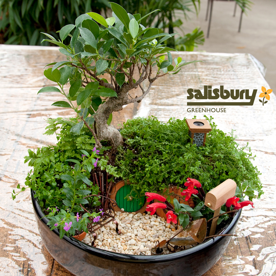 The 50 Best Diy Miniature Fairy Garden Ideas In 2017: Miniature Hobbit Garden