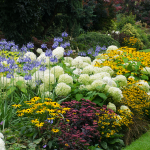 A Complete Crash Course In Demystifying Gardening Zones