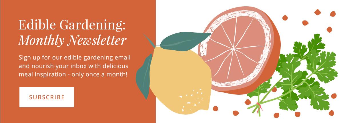 Salisbury Greenhouse Edible Gardening Email Subscribe
