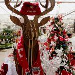 Christmas Theme: Canada 150
