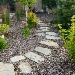 DIY Landscape Design Tips