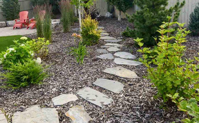 DIY Landscape Design Tips