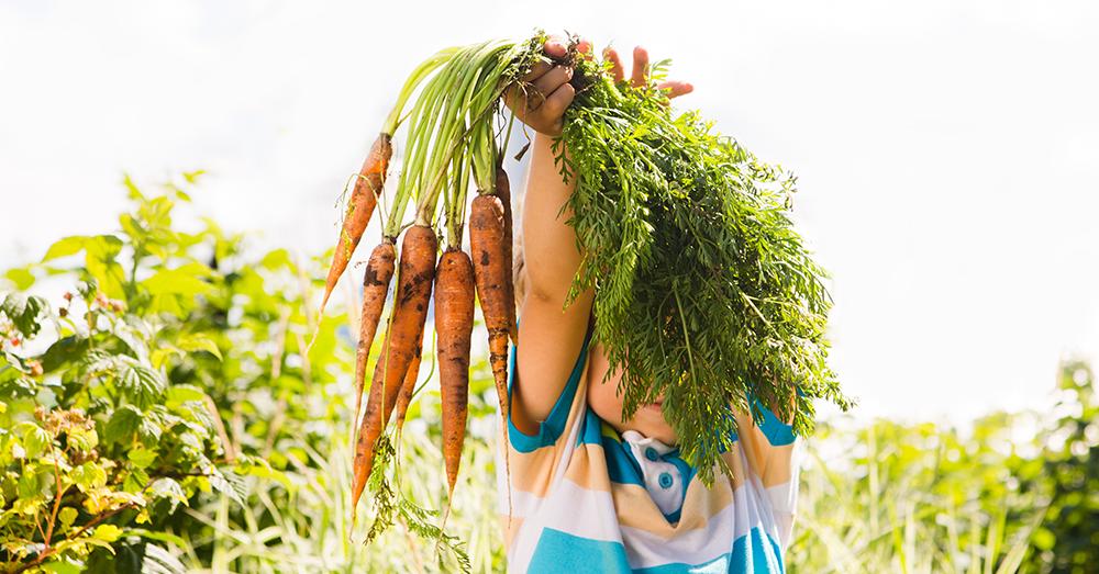 Edible Gardening with Kids