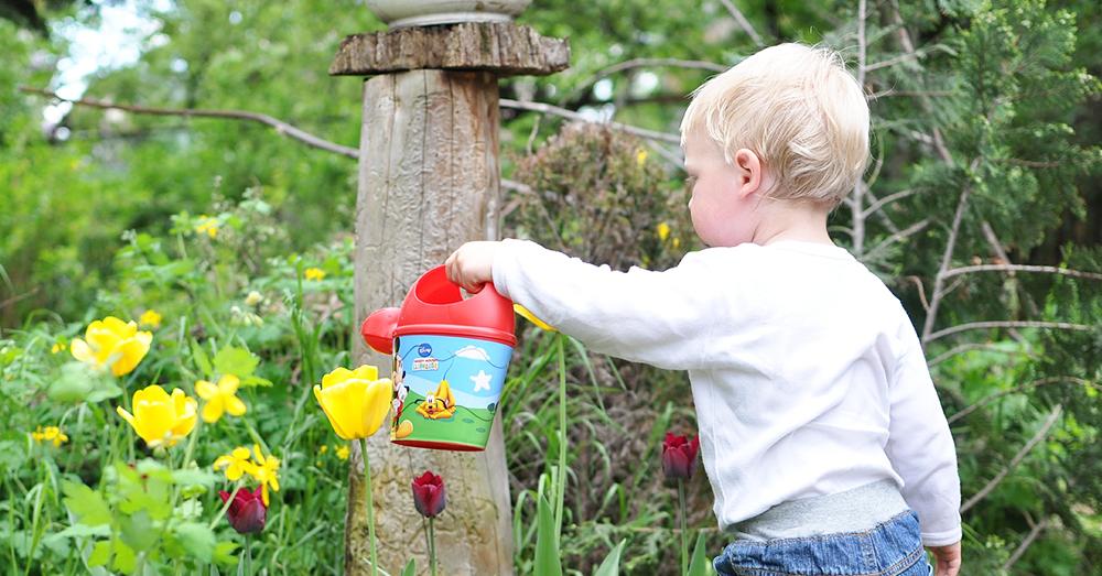 Edible Gardening with Kids Activities