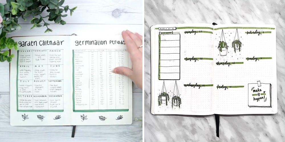 how to create a personalized plant journal bullet examples