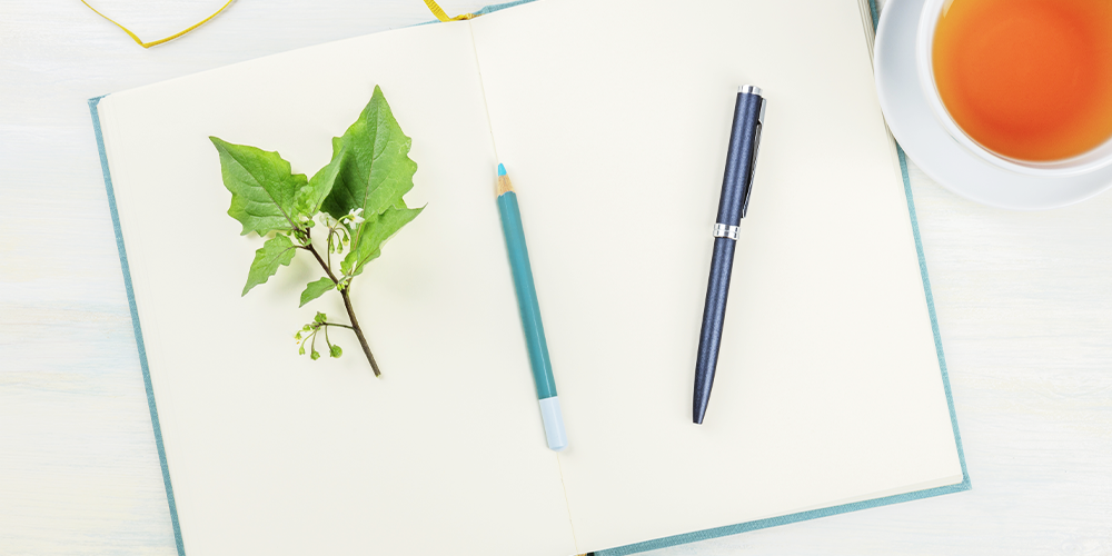 how to create a personalized plant journal empty spread