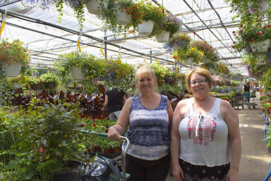 Happy Customers at Salisbury Greenhouse