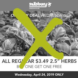 bogo herbs one day deal finished