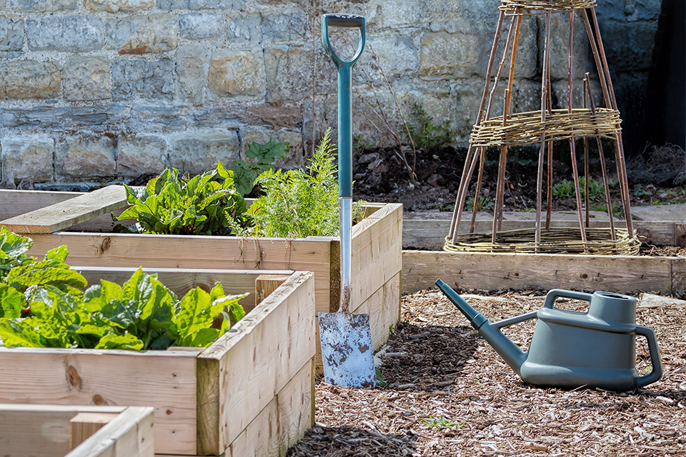 Sustainability in the garden