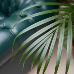The 3 Best Tropical Palms To Cure The Winter Blues