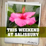 This Weekend at Salisbury | 03.04.16