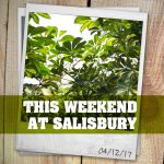 Album: This Weekend At Salisbury – 04/12/17