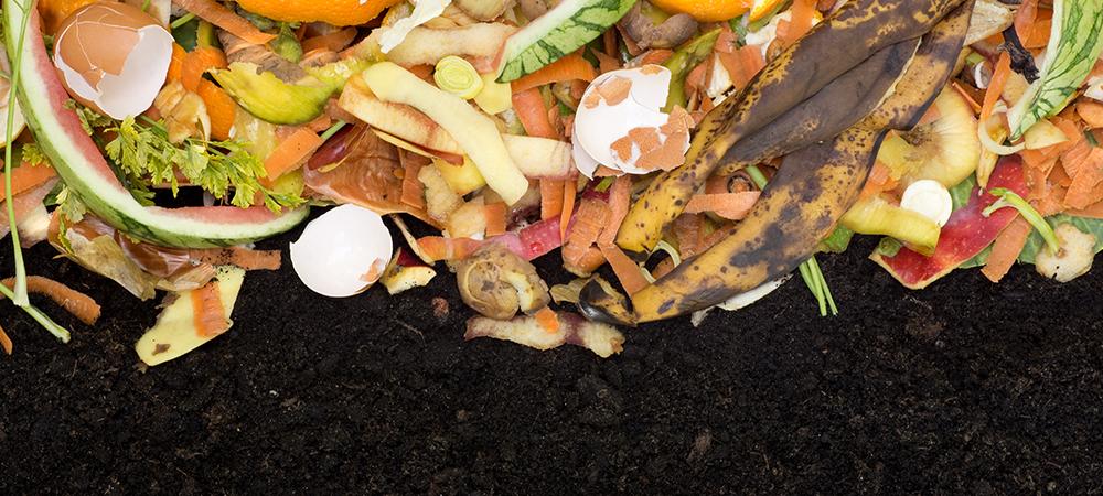 Zero Waste Gardening Compost