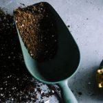 Gardening as an Antidepressant