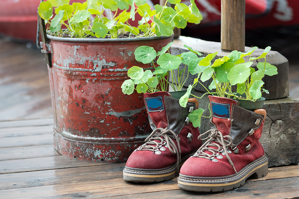 weirdest-gardening-trends-feature