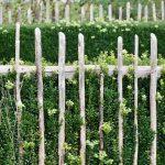 Wind Resistant Gardens