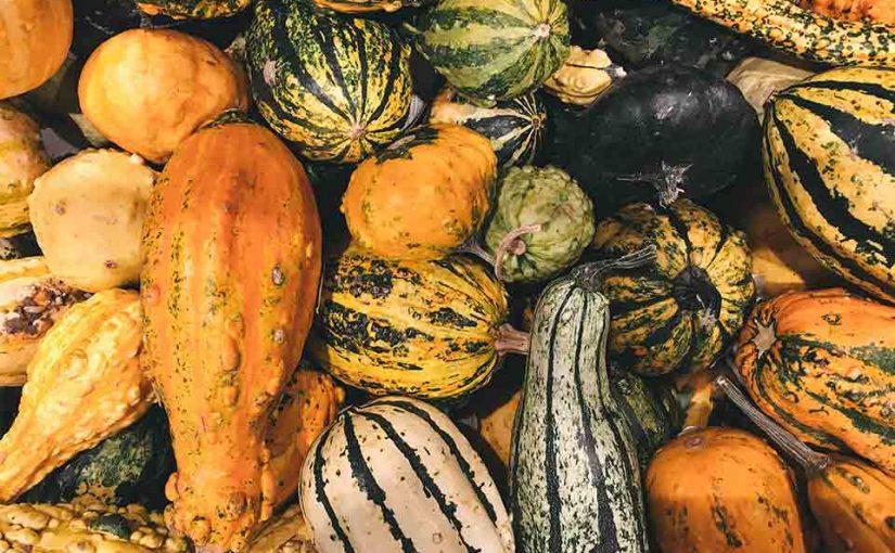 Your Harvesting Calendar